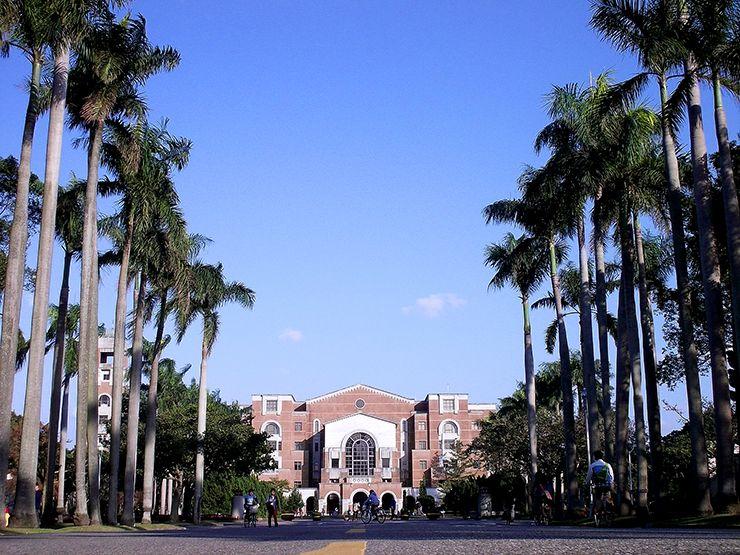 台湾大学・椰林大道