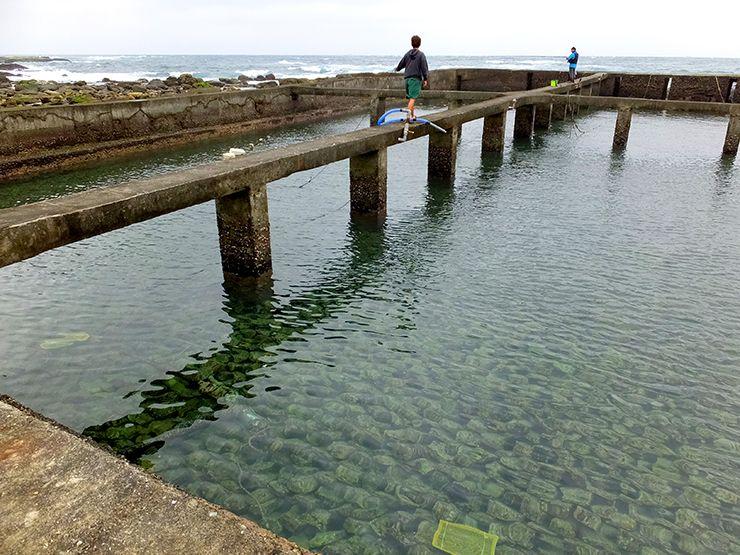 台北・貢寮の貝養殖場