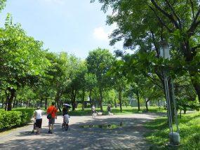 台北・永安市場「四號公園」