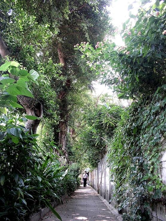 台北・松山機場近隣の人気住宅街「民生社區」の通り
