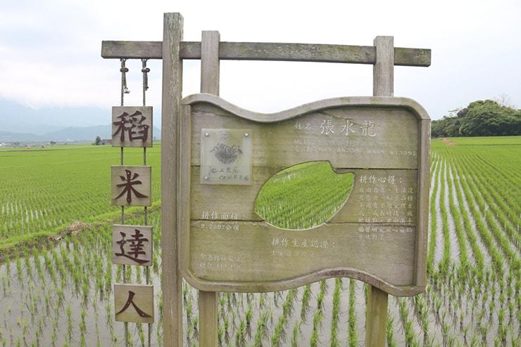 台湾の米どころ台東・池上「池上平原」の米づくり達人説明看板