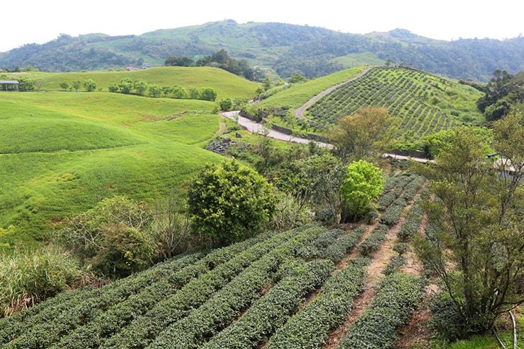 花蓮・六十石山から眺める台湾の山々