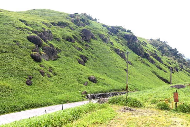 花蓮・六十石山の緑の景色