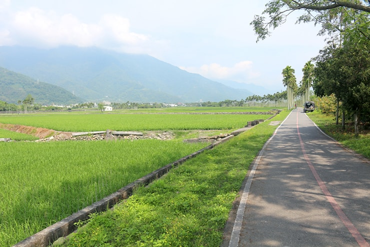 台東・關山のサイクリングロードから望む水田と山々
