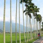 池上から日帰りで行ける花蓮&台東の美景スポット2選。
