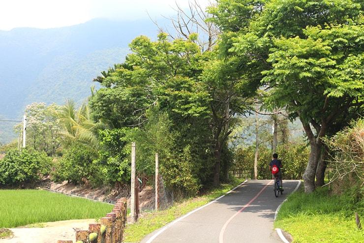 台東・關山のサイクリングロードを走る自転車