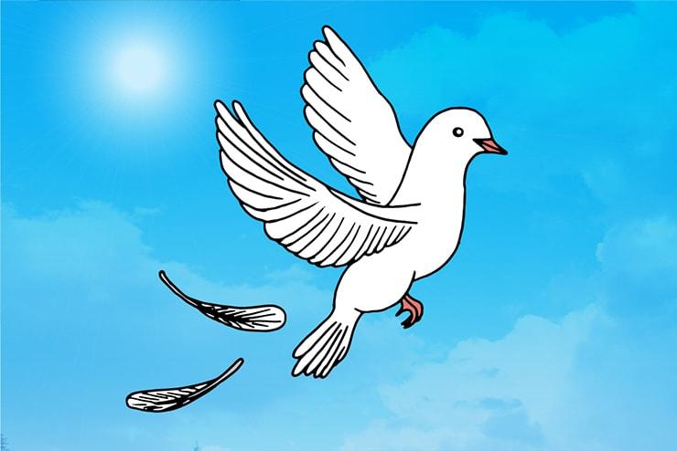空に羽ばたく白い鳩