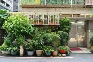 緑の鉢植えで溢れる台湾の民家