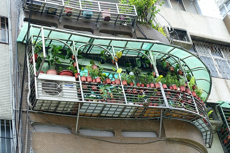鉢植えで溢れる台湾のベランダ