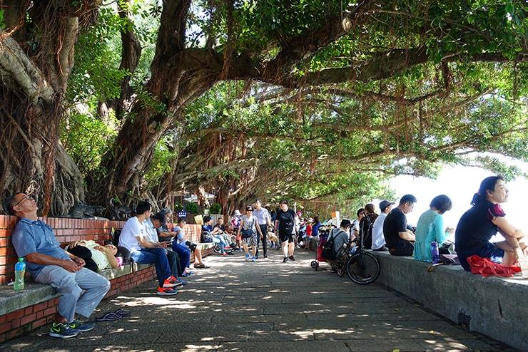 台北・淡水河邊の木陰で休憩する人々