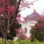 台北旅行には春を全力でオススメしたい4つの理由。