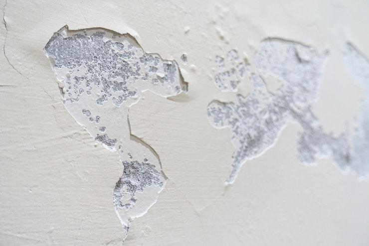 台湾の部屋でよく発生する壁のガン「壁癌」