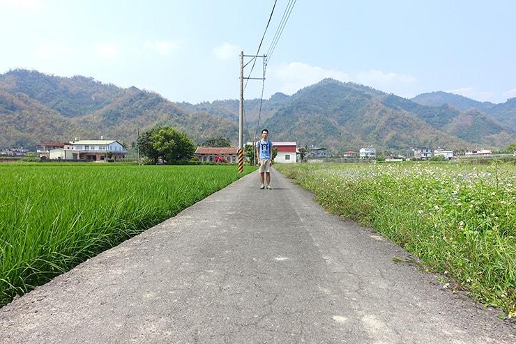 高雄・美濃の水田と小道