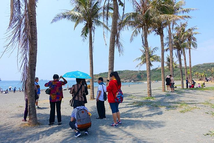 高雄・旗津の椰子が並ぶビーチ