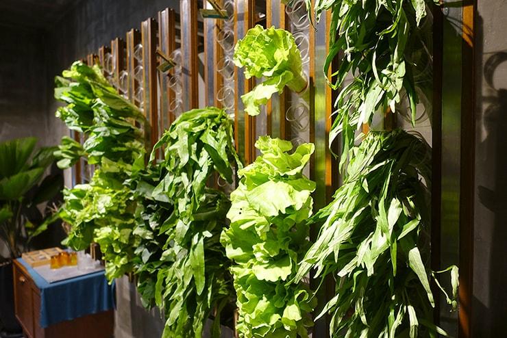 台北・東區(國父紀念館)「蔬河 VEGE CREEK」の壁に刺さった葉物野菜
