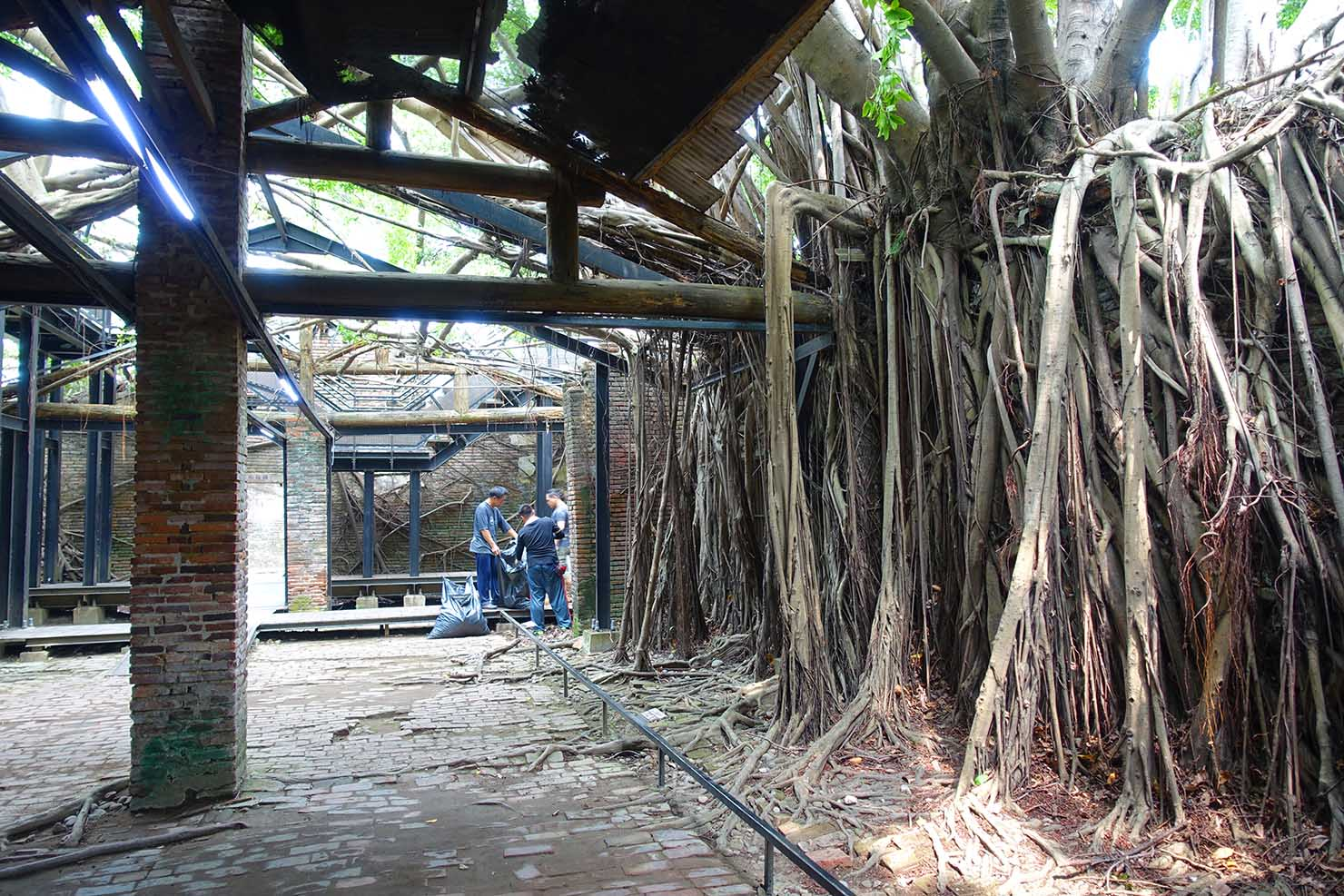 台湾の古都・台南のおすすめ観光スポット「安平樹屋」の内部