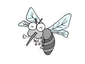 台湾でよく見かける虫「蚊子(蚊)」