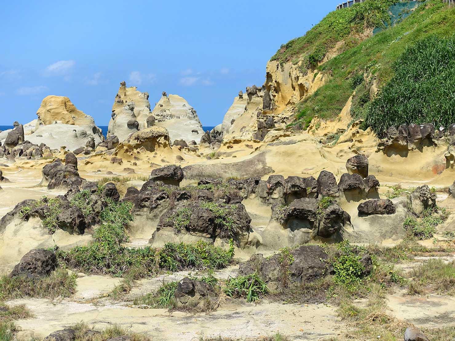 台北から日帰りで行ける基隆・和平島公園の海岸沿いに広がる奇岩群