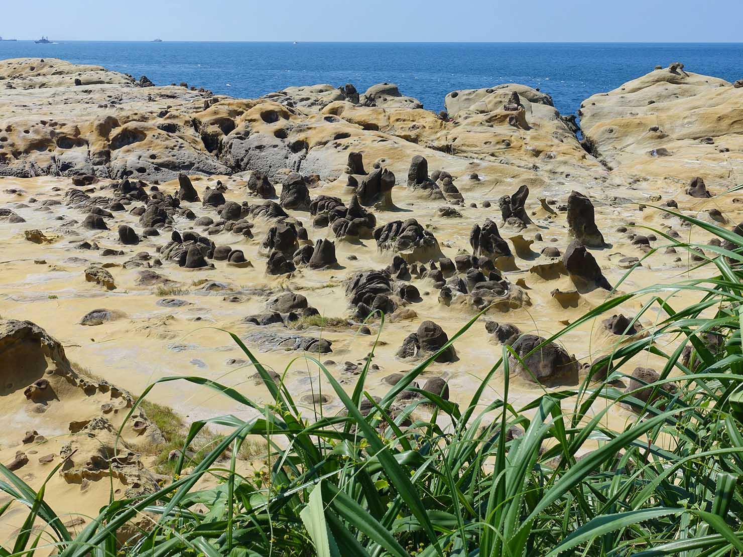 台北から日帰りで行ける基隆・和平島公園の海岸沿いに広がる奇岩群の俯瞰