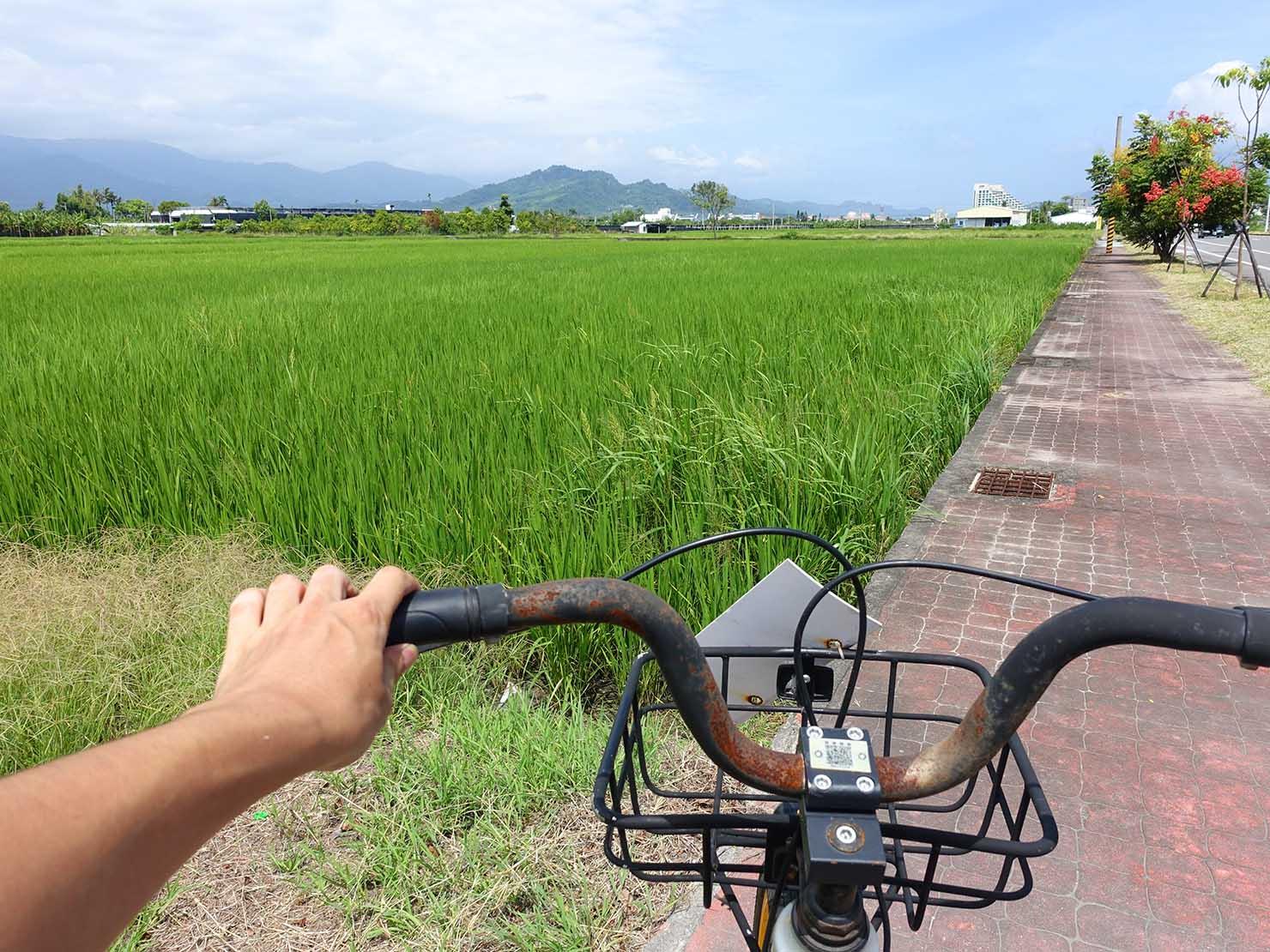 シェアサイクル「obike」で台東の田園風景を走る