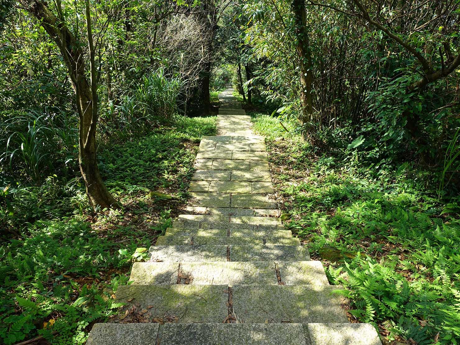 台北・九份「琉瑯路步道」の密林に伸びる階段