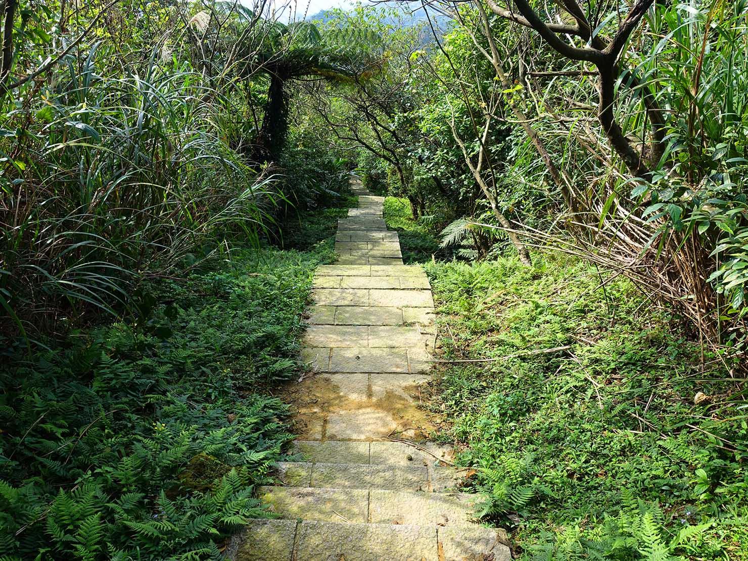 台北・九份「琉瑯路步道」トンネルの先の階段
