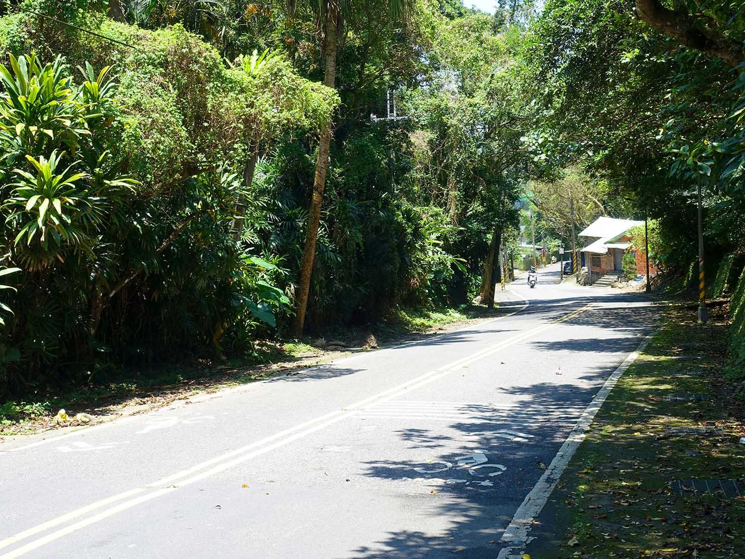 台北一周自転車道「研究院路四段」の下り坂
