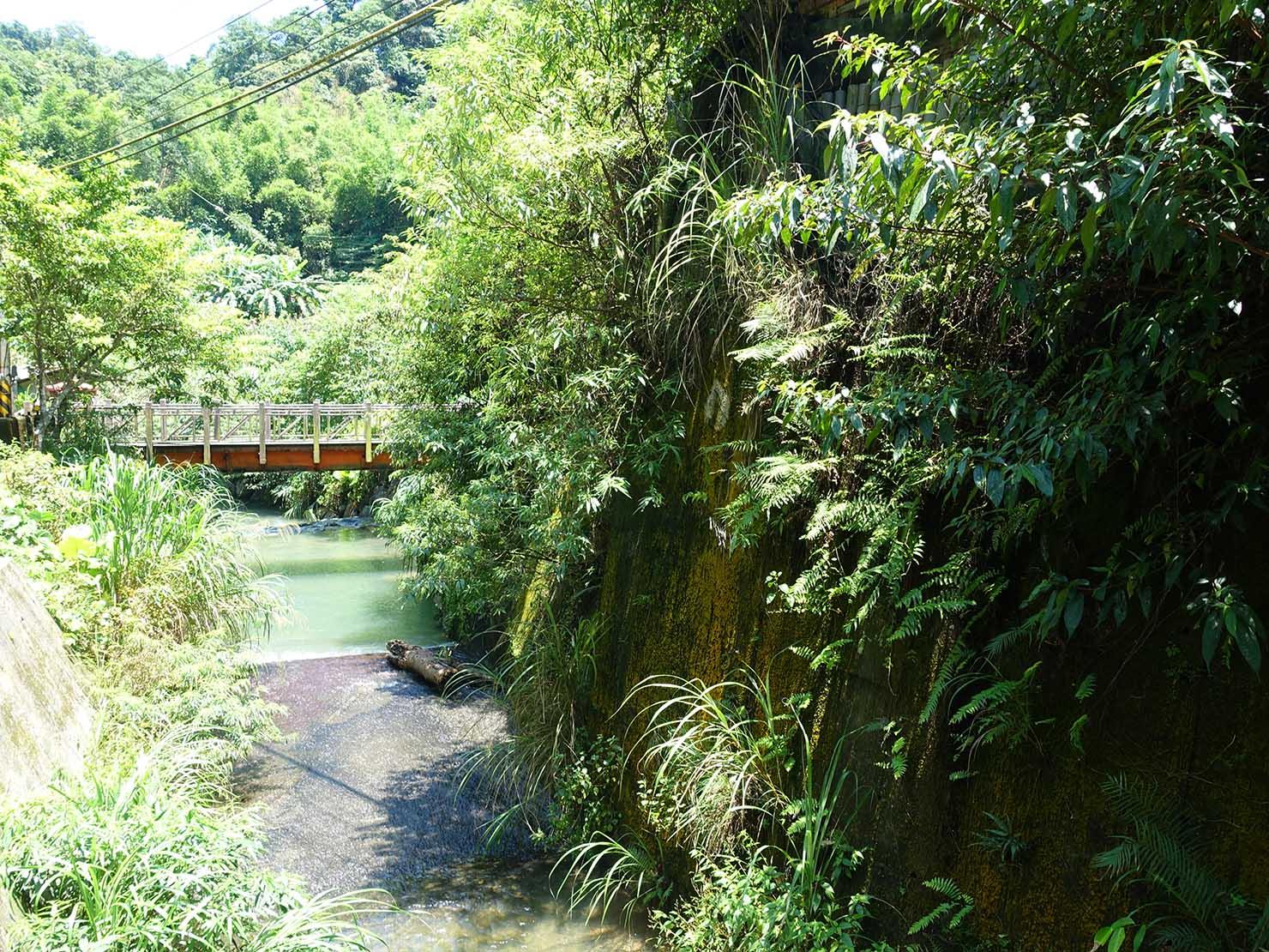 台北一周自転車道「研究院路」の横に流れる小川