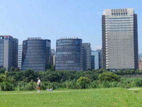 台北一周自転車道「觀山河濱公園」から見える內湖科學園區のビル