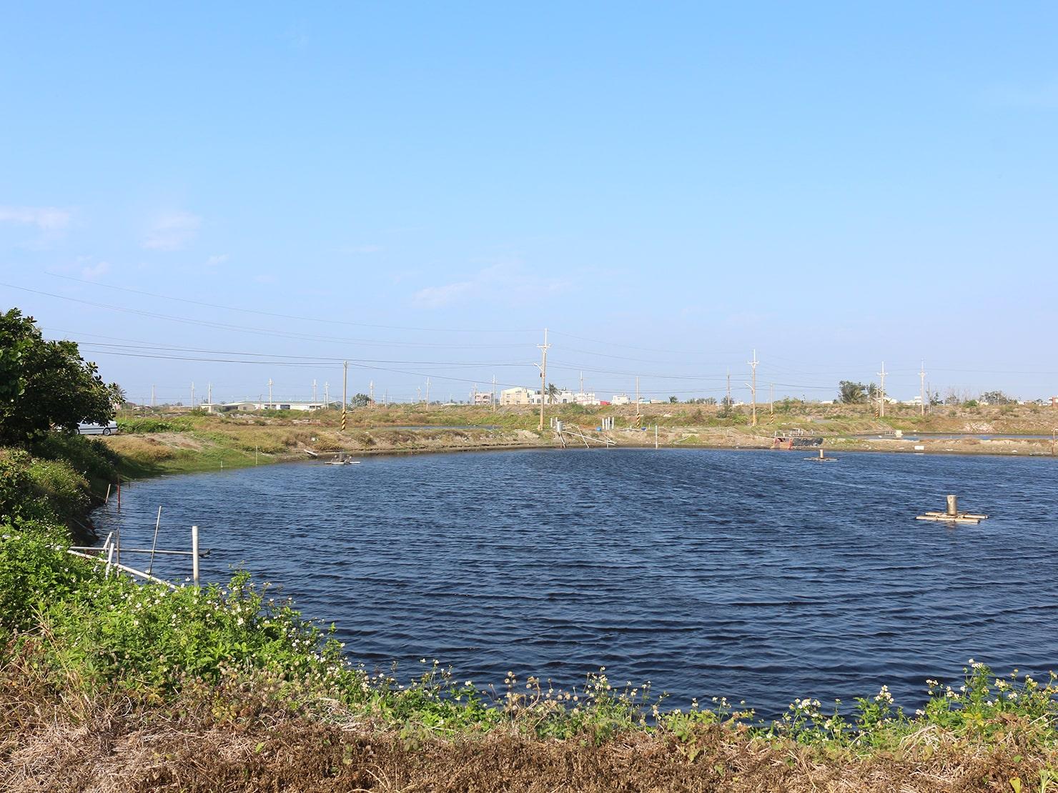 台南市街郊外のおすすめ観光スポット「台江國家公園」のため池