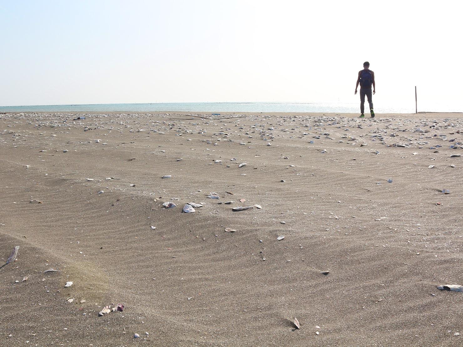 台南市街郊外のおすすめ観光スポット「台江國家公園」の砂浜