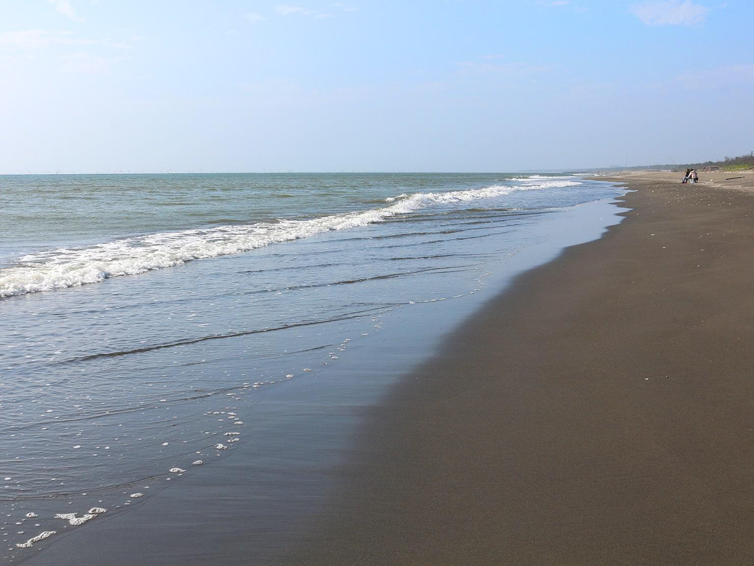 台南市街郊外のおすすめ観光スポット「台江國家公園」の海岸