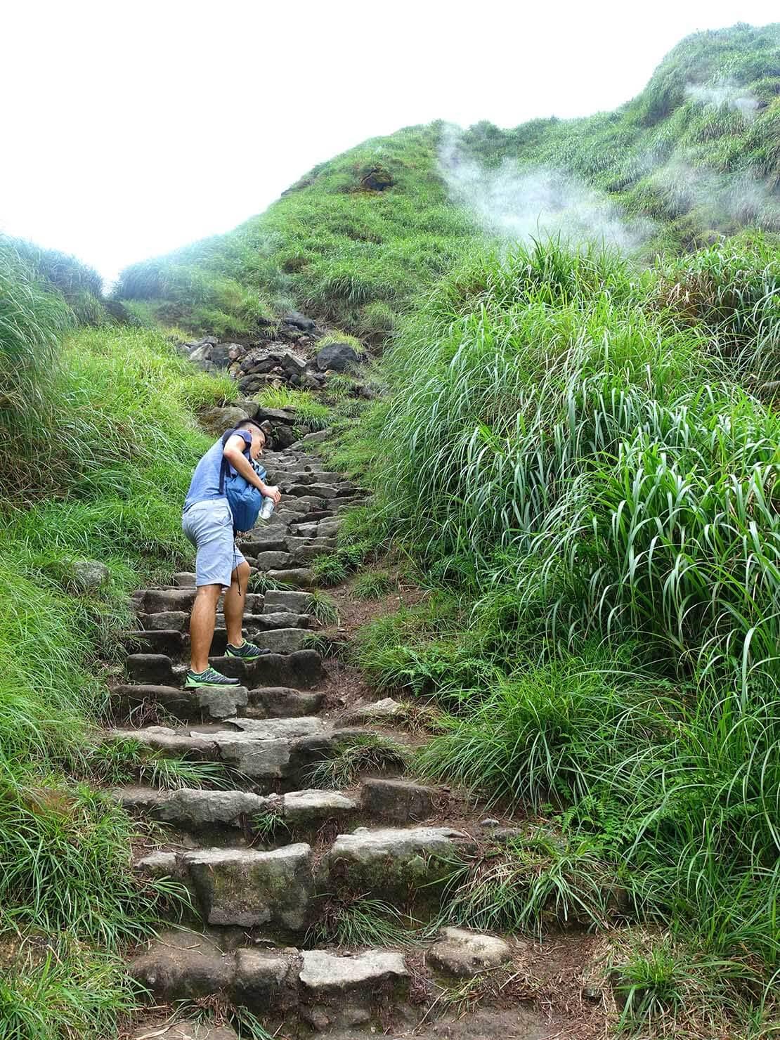 台北最高峰・七星山への登山歩道の急な階段