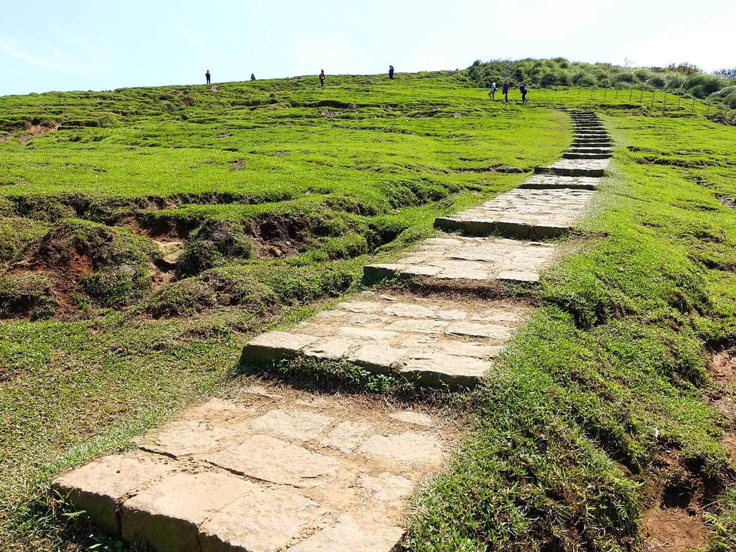 台北・陽明山のおすすめスポット「擎天崗」の草原を伸びる階段