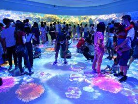 台北に誕生した都市型水族館「Xpark」内エリア「珊瑚潛行」