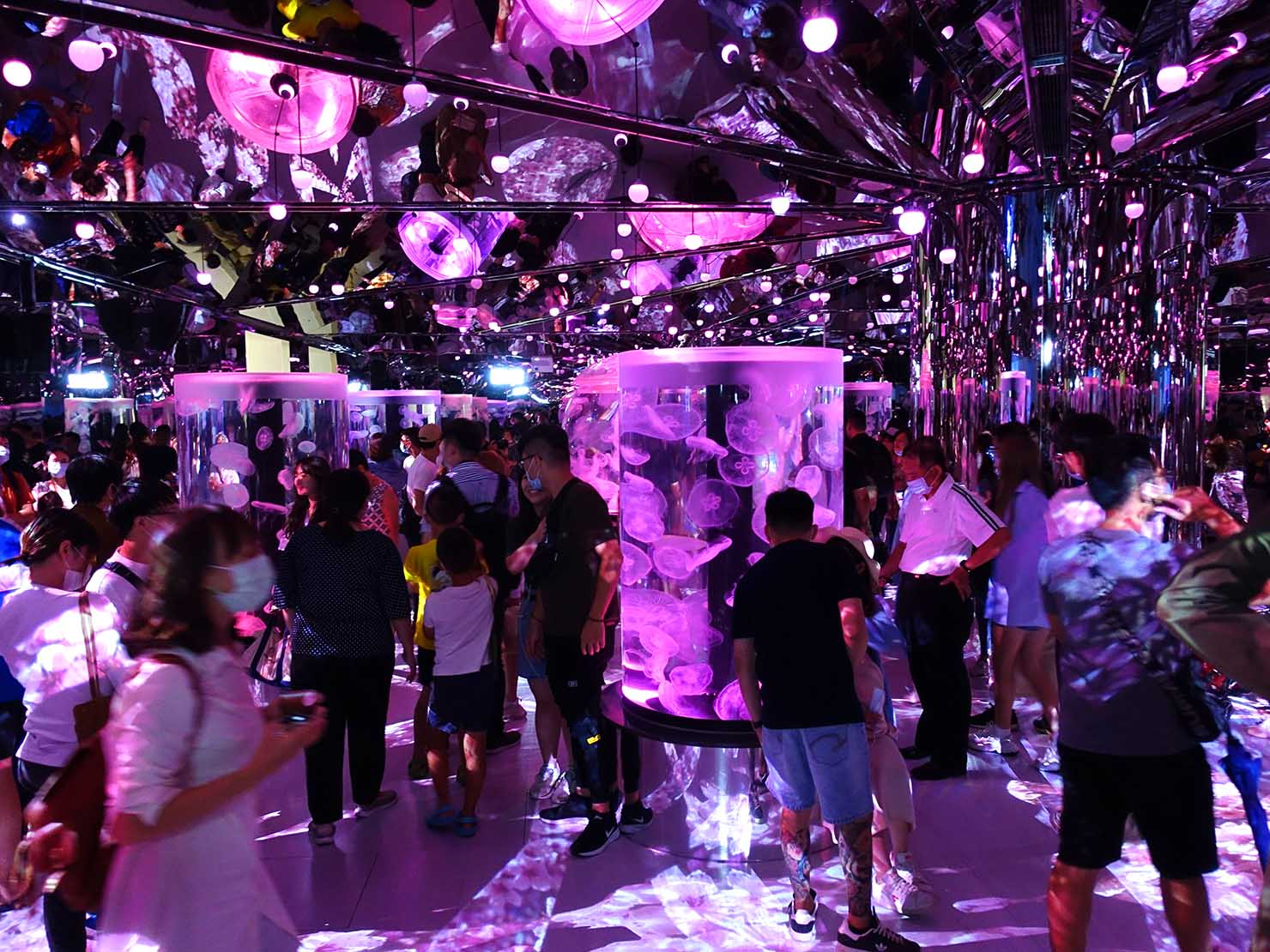 台北に誕生した都市型水族館「Xpark」内エリア「癒見水母」