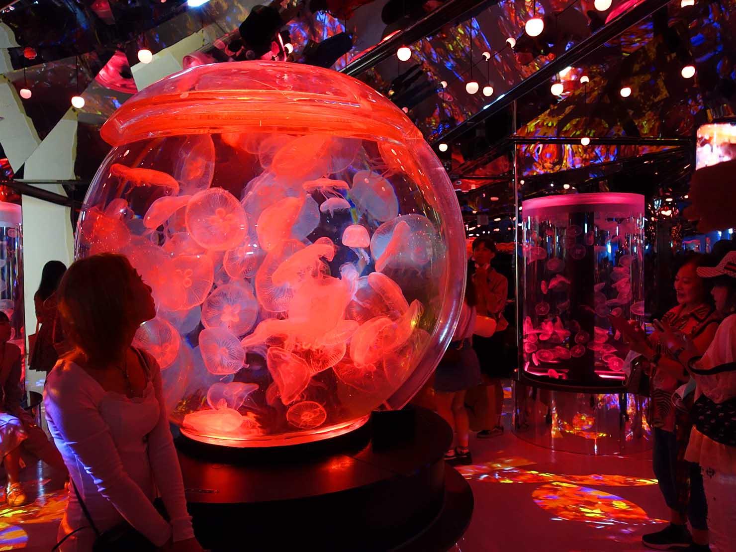 台北に誕生した都市型水族館「Xpark」内エリア「癒見水母」のクラゲ水槽