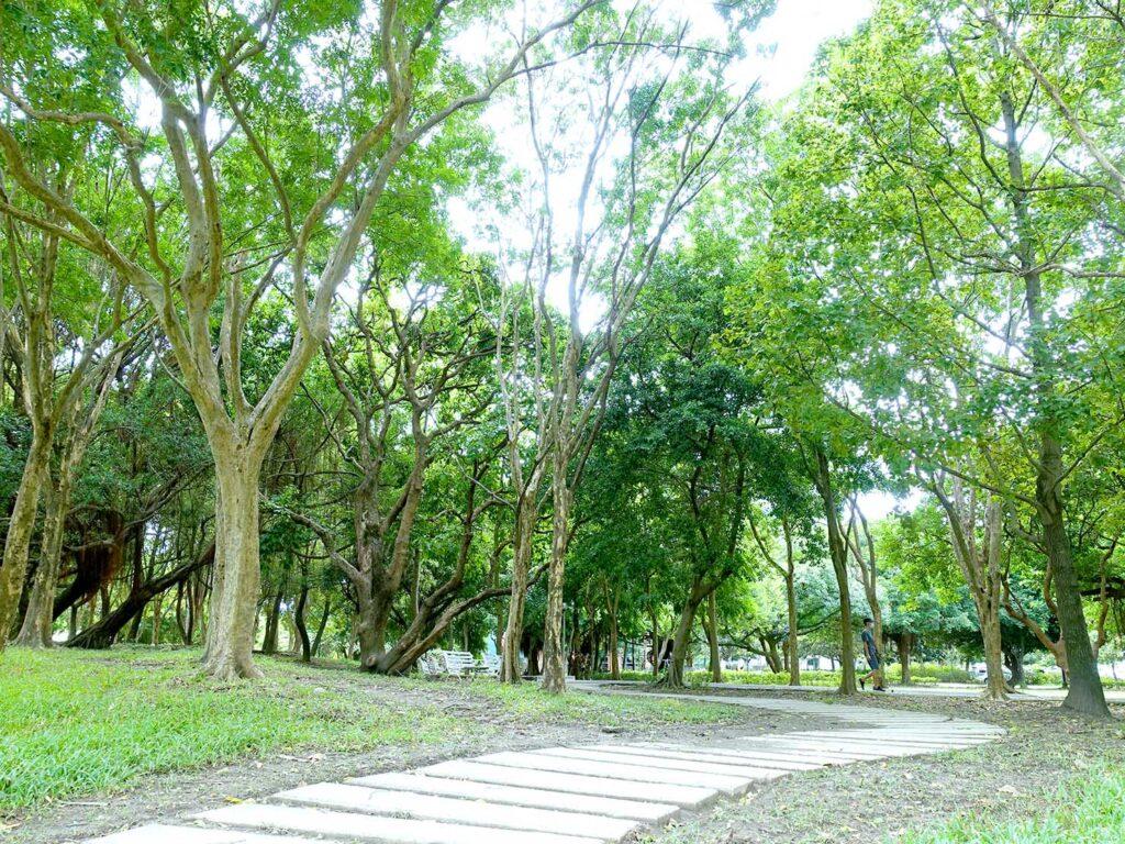 永安市場・四號公園の散歩道